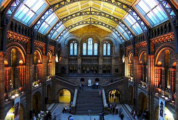 natural-history-museum-free museums in central london