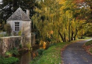 The Cotswold